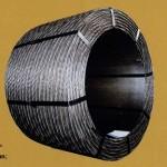 Cáp thép dự ứng lực ASTM A416/A416M   Sp02